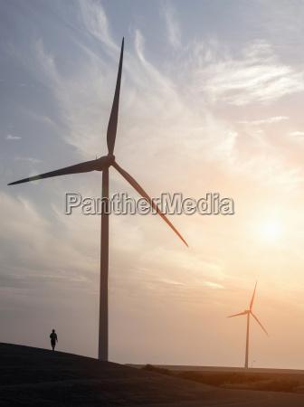 man strolling near wind turbines and