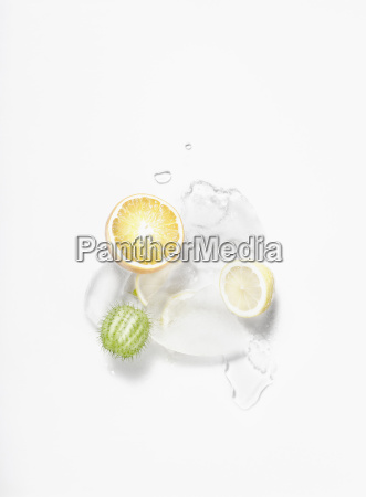 bestellen ordern blume pflanze gewaechs frucht