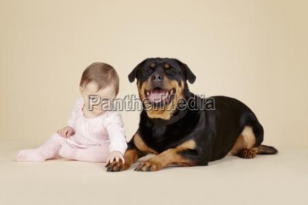 studio portrait of baby girl touching
