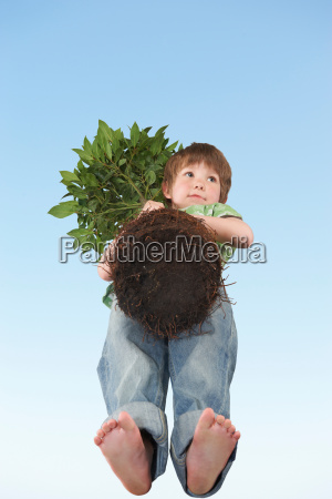 boy holding tree with exposed roots