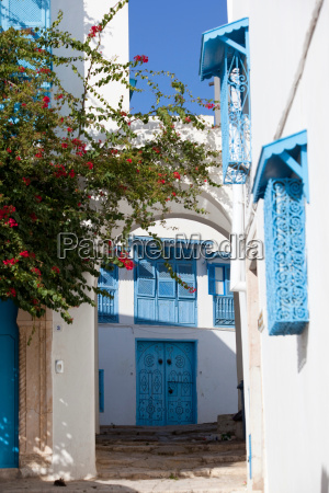 typical blue and white houses on