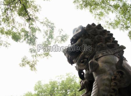 fahrt reisen tempel baum statue loewe