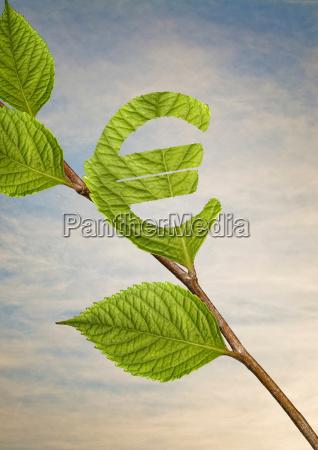 leaf cut into euro sign