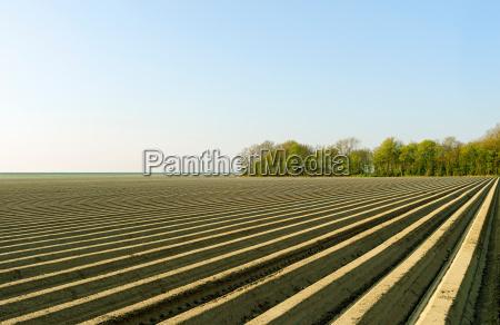 ploughed fields espel noordoostpolder netherlands