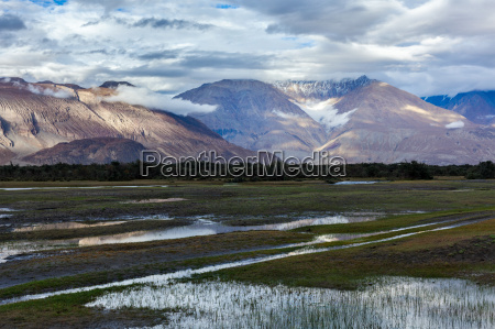 hunder nubra valley ladakh india