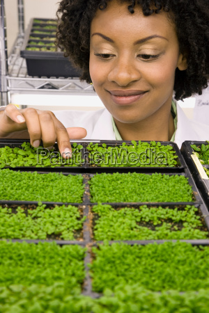 scientist taking care of plant