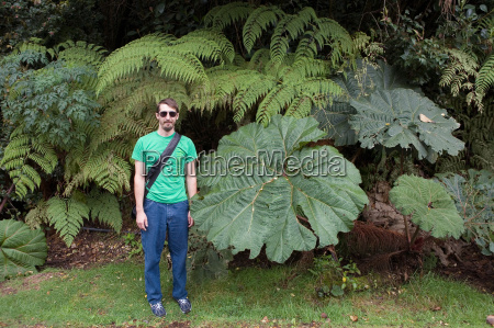 man standing by large leaves poas