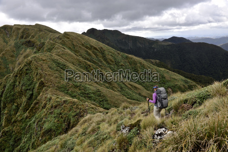 rear view of female hiker hiking