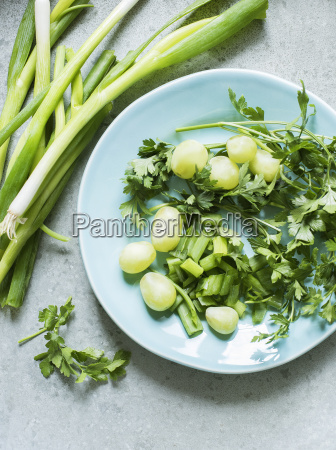 still life of plate with herbs