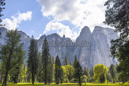 view of mountains and forest yosemite