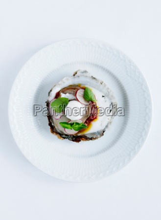 plate of oysters with radish and