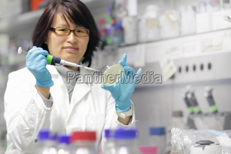 scientist examining petri dish in lab