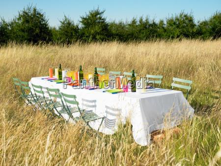 table in a field celebration