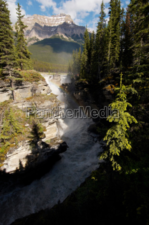 athabassa falls off the icefield highway