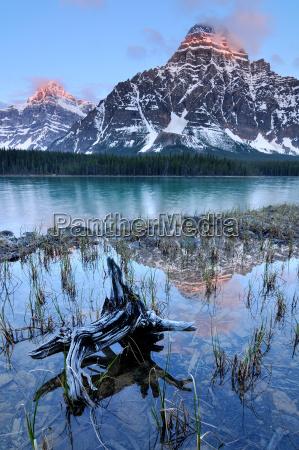 lower waterfowl lake and mount chephren