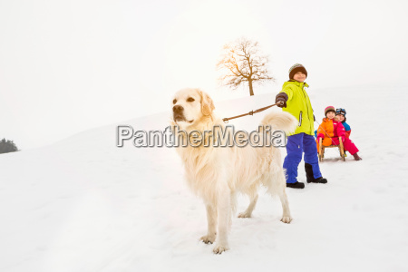 boy with dog pulling two friends