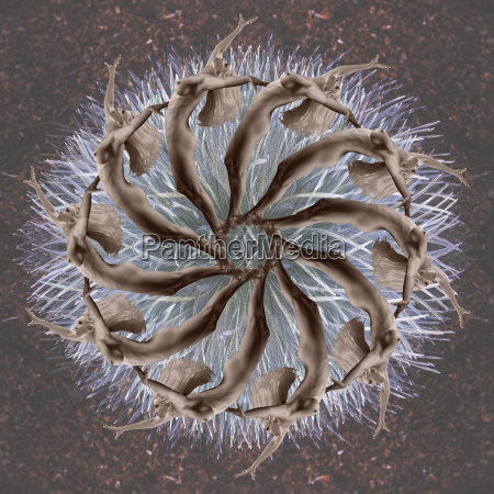 mehrere bild kaleidoskop der reifen nackten