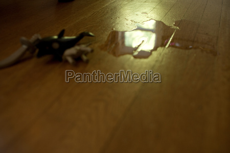 water and toys on wooden floor