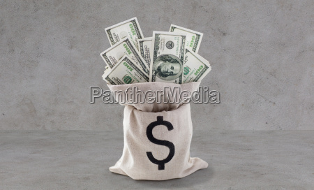 dollar paper money in bag over