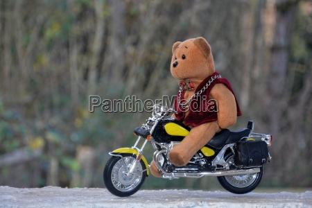 teddy baer sitzt auf motorrad im