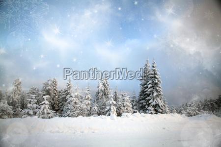 fantastic winter landscape