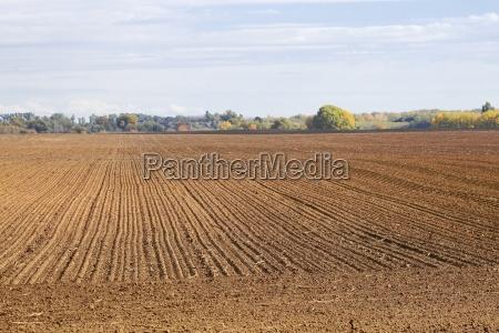 agircutural field with brown soil