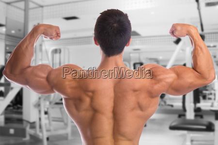 bodybuilder bodybuilding muskeln fitnessstudio ruecken posen