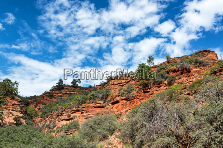 landscape and beautiful sky in zion
