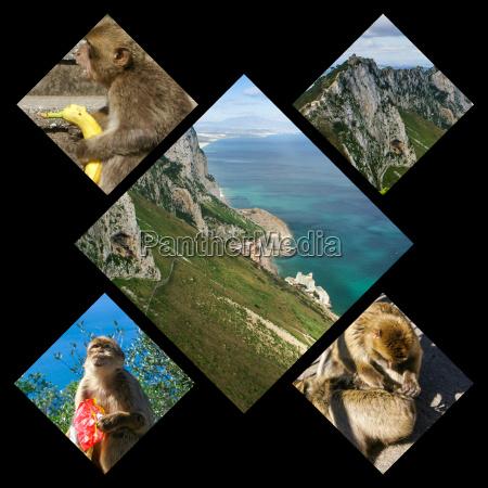 collage of gibraltar meine fotos