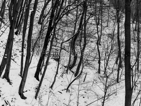 schnee und eis und winterliche texturen