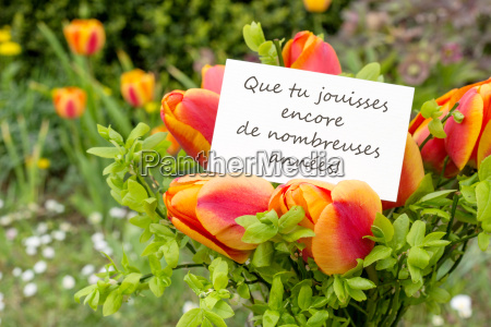 greeting card with tulips and french