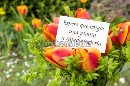 greeting card with tulips and spanish