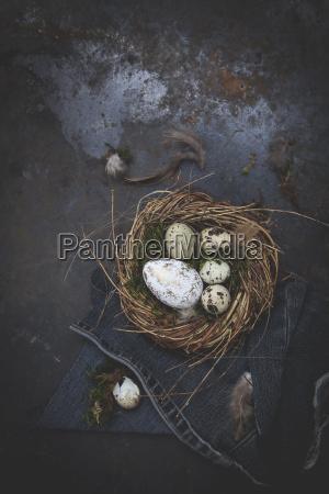 oster dekoration mit nest und ei