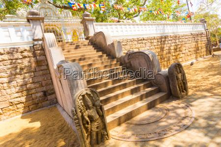 anuradhapura jaya sri maha bodhi tree