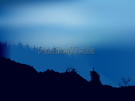 forest scene with foggy night