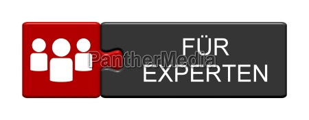 puzzle button shows for experts