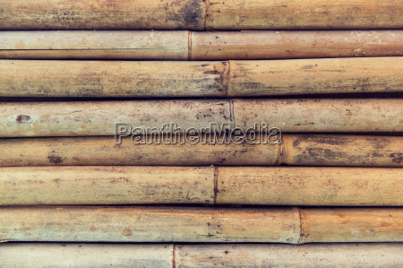 bamboo cane wall texture