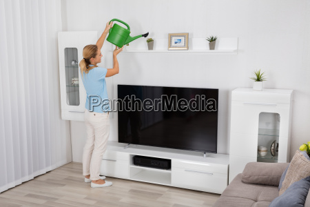 woman watering plant at home