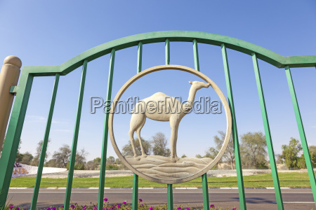 camel figure in a fence