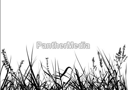gras silhouette