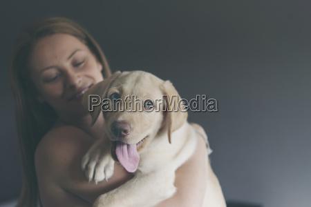 labrador retriever puppy on the arms