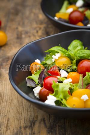 bowl of leaf salad with goat