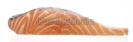 slice of raw salmon filet