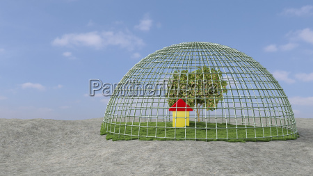 tree and building under domed grid