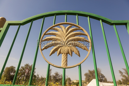 palm tree figure in a fence
