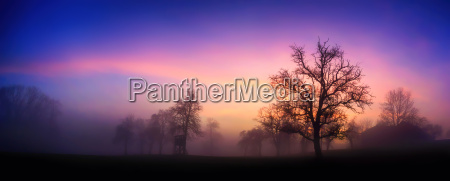 colorful dawn ashore in winter with