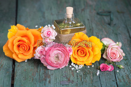 still life with colorful roses and