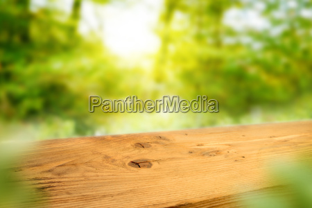 wooden table in a spring landscape