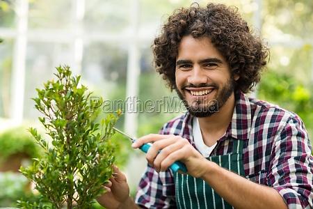 happy male gardener pruning plants at