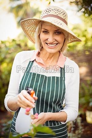 frau, lächelt, beim, gießen, von, pflanzen - 20426917
